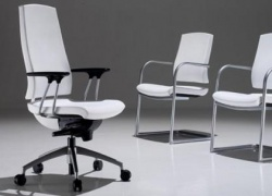 Sedute per ufficio: tutto quello che devi sapere